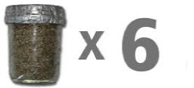 1_Step_Premium_Mushroom_jarx6-1.jpg