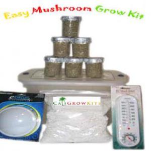 Mushroom-Grow-kits.jpg